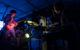 Gallery: Bluesfest Day 4 w/ P!nk, Yonatan Gat, Rebecca Noelle, & more